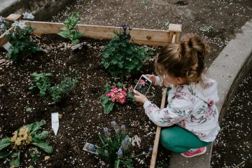 Environmental Changes for Sustainable Schools