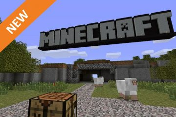 Minecraft for Education: Videogames in the Classroom