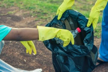 Service Learning: Environmental Projects for Your Classroom… and Beyond