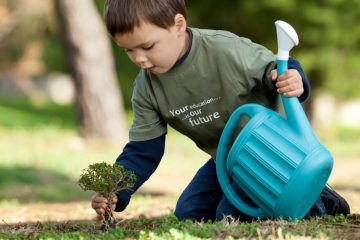Environmental Stewardship: How to Reconnect With Nature